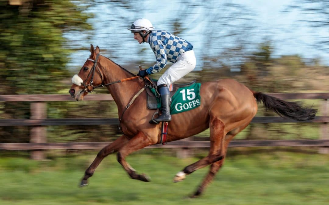 Point to Point Racing at 'The Folly'